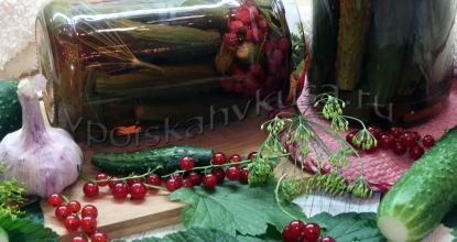 Огурцы маринованные с красной смородиной на зиму